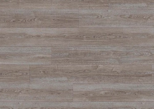 Moduleo TRANSFORM Verdon Oak 24962